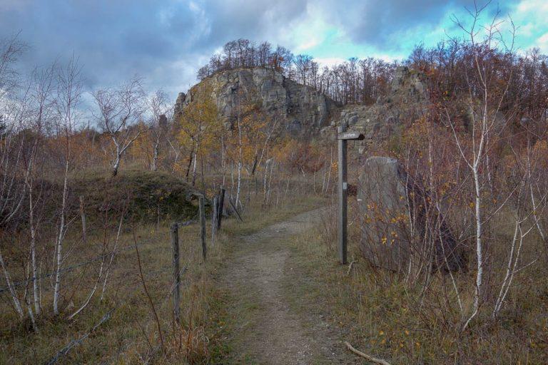 Bockshorn - alter Steinbruch bei Salzhemmendorf