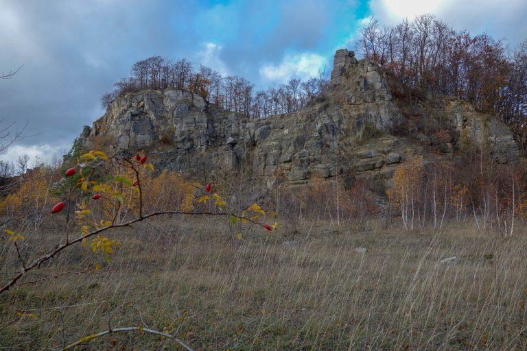 Trockenrasenflächen am alten Steinbruch