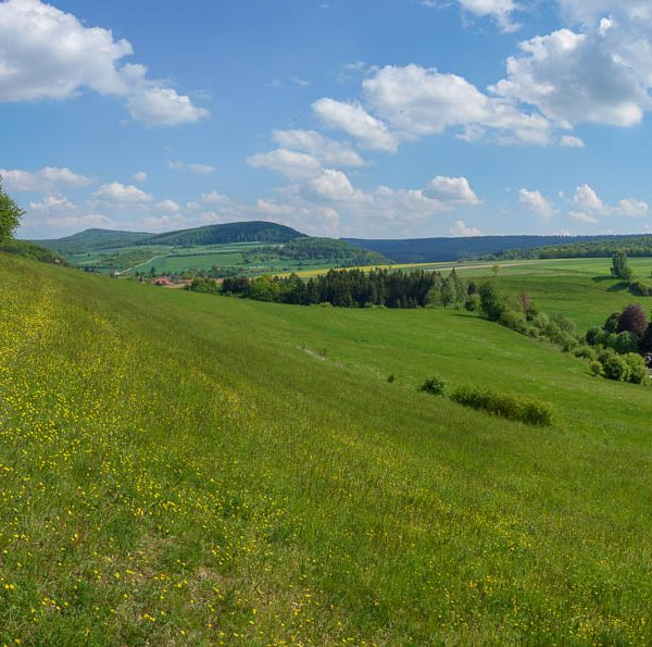 Naturschutzgebiet Idtberg bei Kaierde