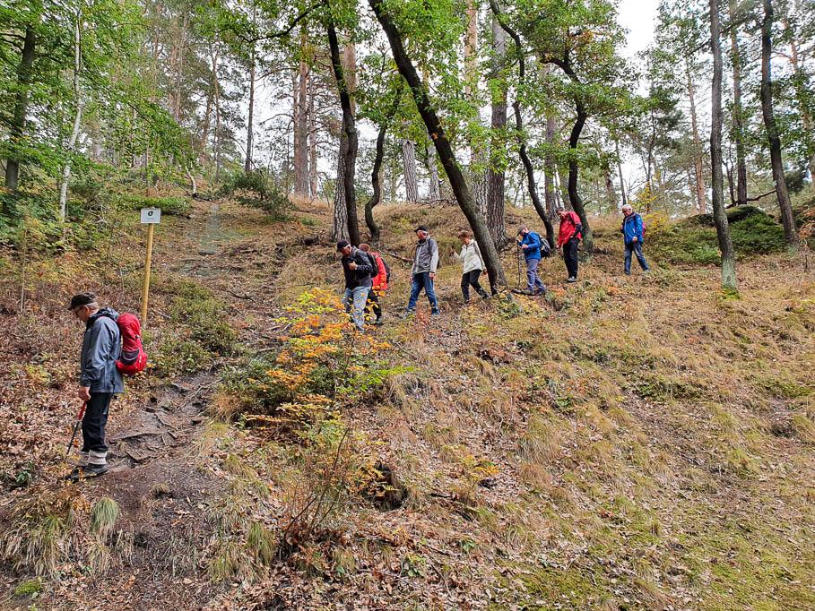 Auf schmalen Pfaden führt Peter Scholz die Wanderer um die Burg Regenstein
