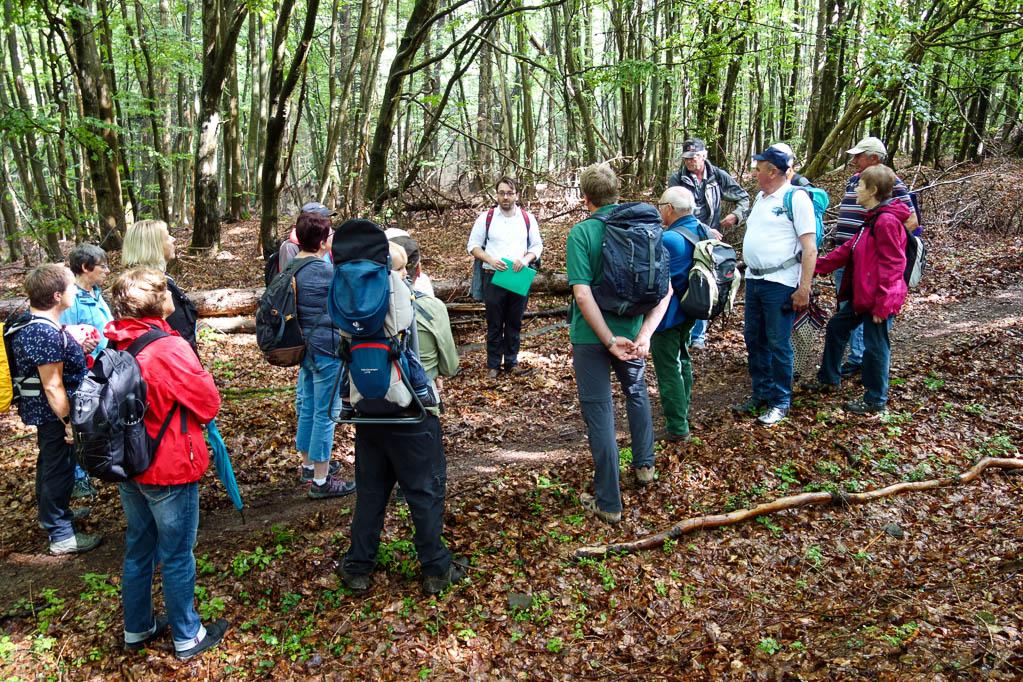 Tobias Scholz hält einen Vortrag über die Hünenburg